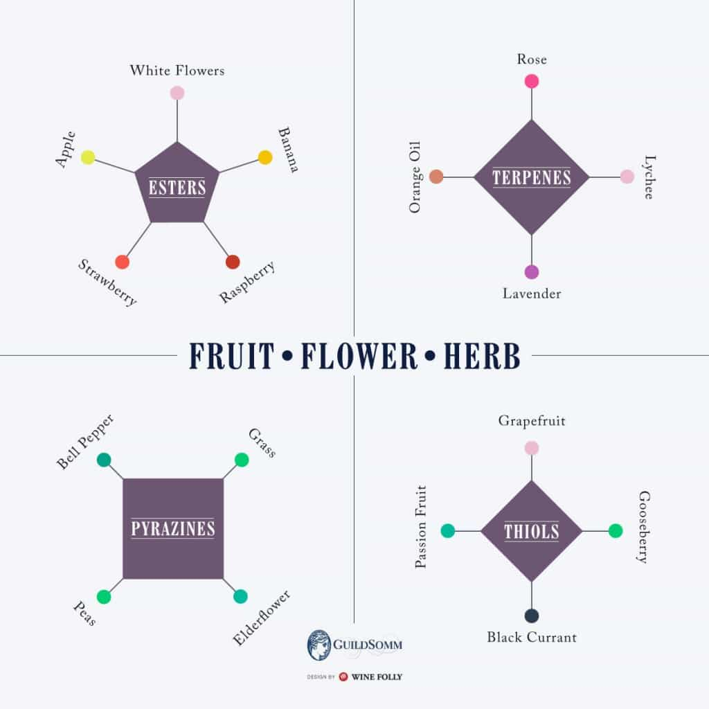 Fruit flower and herb chart